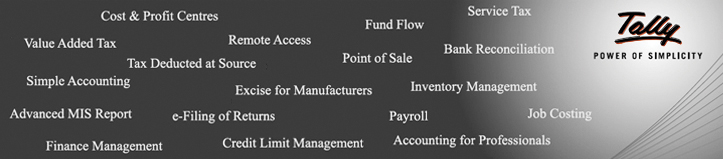 Image result for tally accounting erp 9